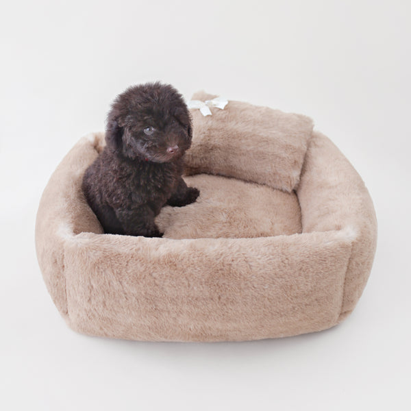 Teddy Bear Dog Bed