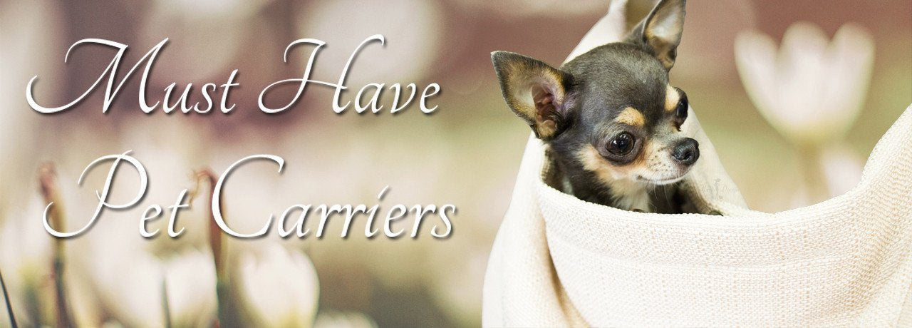 luxury, pet, blankets, hello, doggie, pet, products, teacup, puppy, blanket for dog, cute dog blankets, designer dog blankets, designer, cute, dog blankets, fancy, fancy dog blanket, soft dog blanket, plush dog blanket,  warm blanket, small dog blankets, teacup dog blankets, tiny dog blankets, xxs dog blankets, yorkie blankets,  yorkie