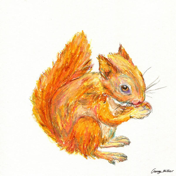 Squirrel Watercolor Print, Wall Art, Abstract Floral Painting, Art Print Watercolor, Artwork And Prints For Walls, Print for Kids Room