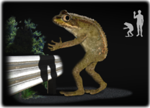 Have You Spotted the Loveland Frogman?