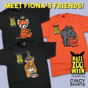 Meet Fiona's Friends!