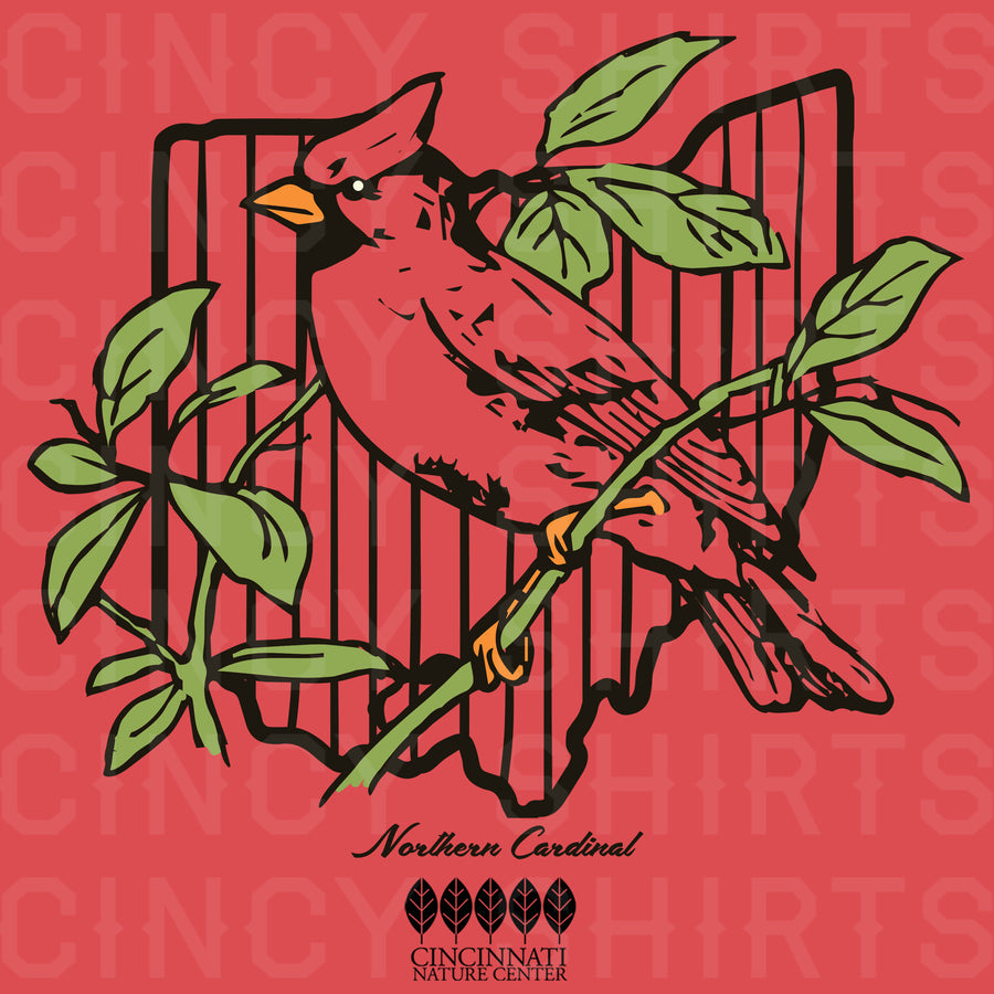 Northern Cardinal - ONLINE EXCLUSIVE