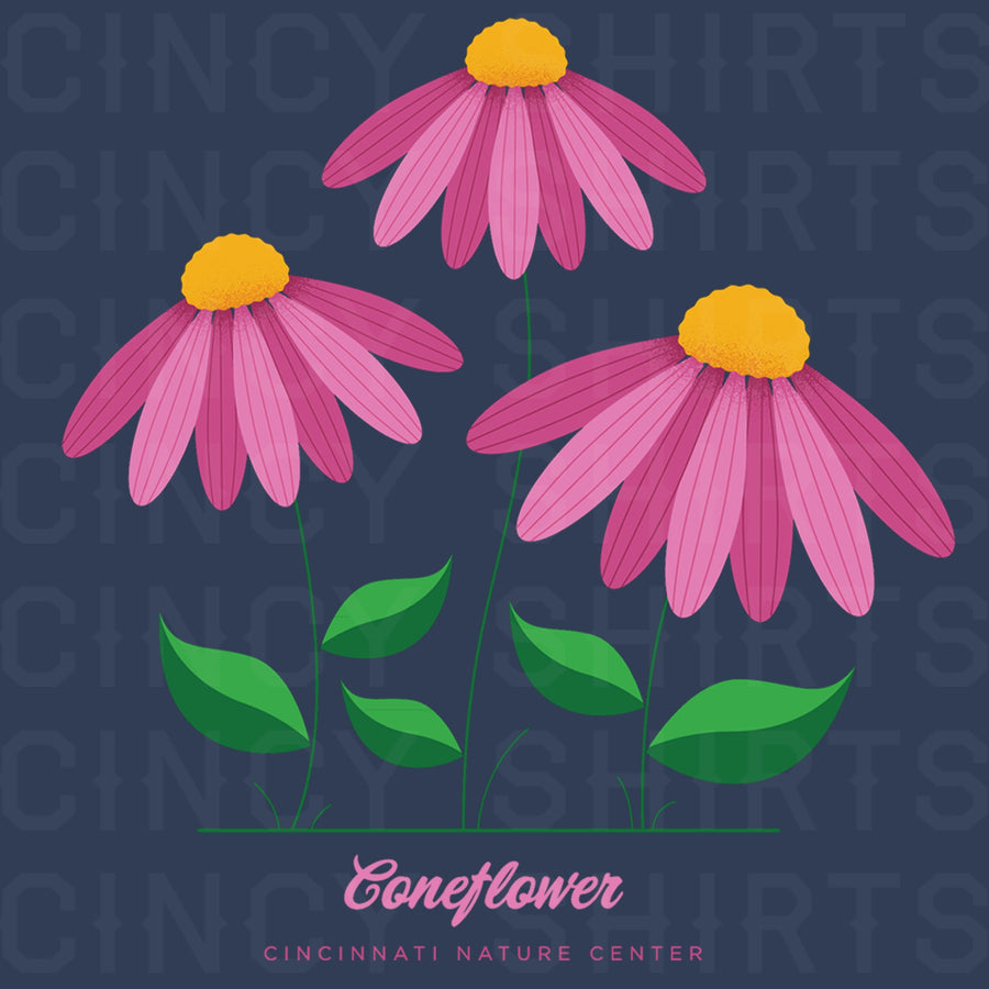 Coneflower - Cincinnati Nature Center