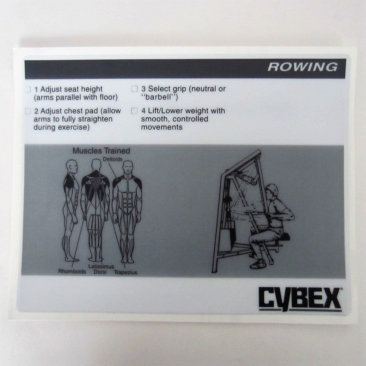 Cybex Classic Rowing