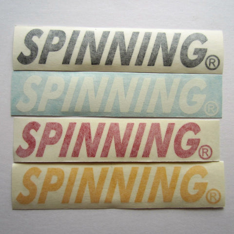 "NXT Spinning Frame Decal 7"" x 1-1/4"""