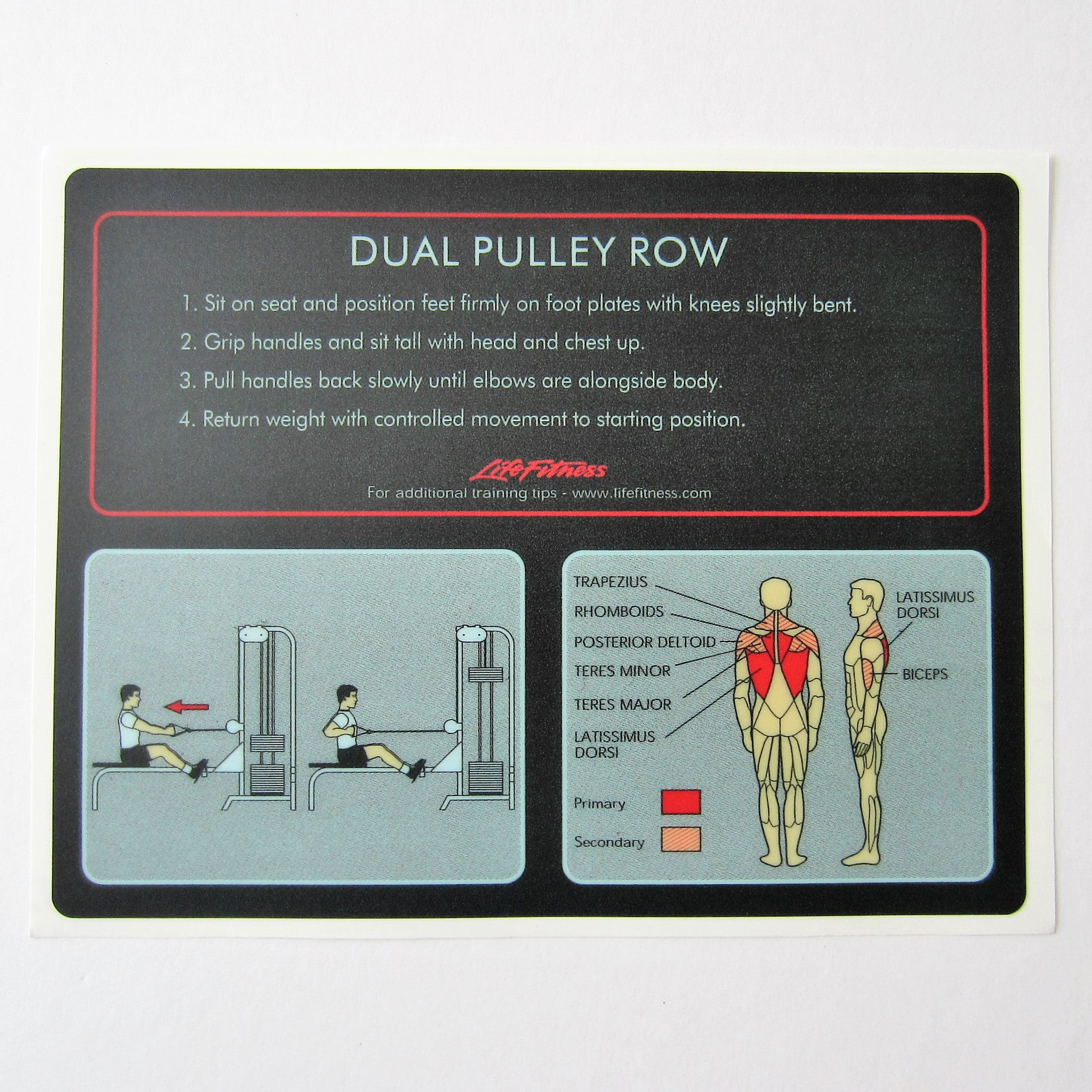 Pro 1 Dual Pulley Row
