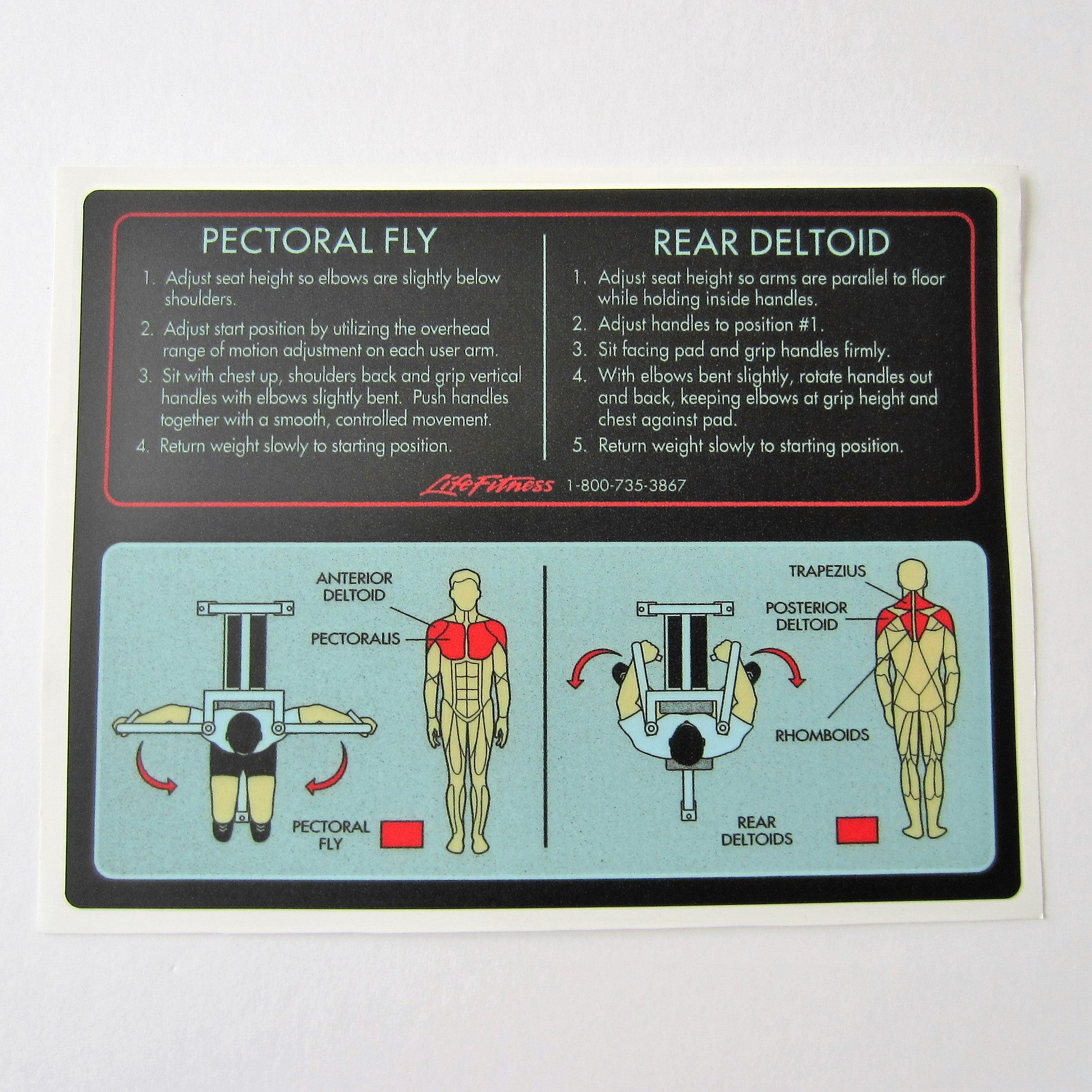 Pro 1 Pectoral Fly / Rear Deltoid
