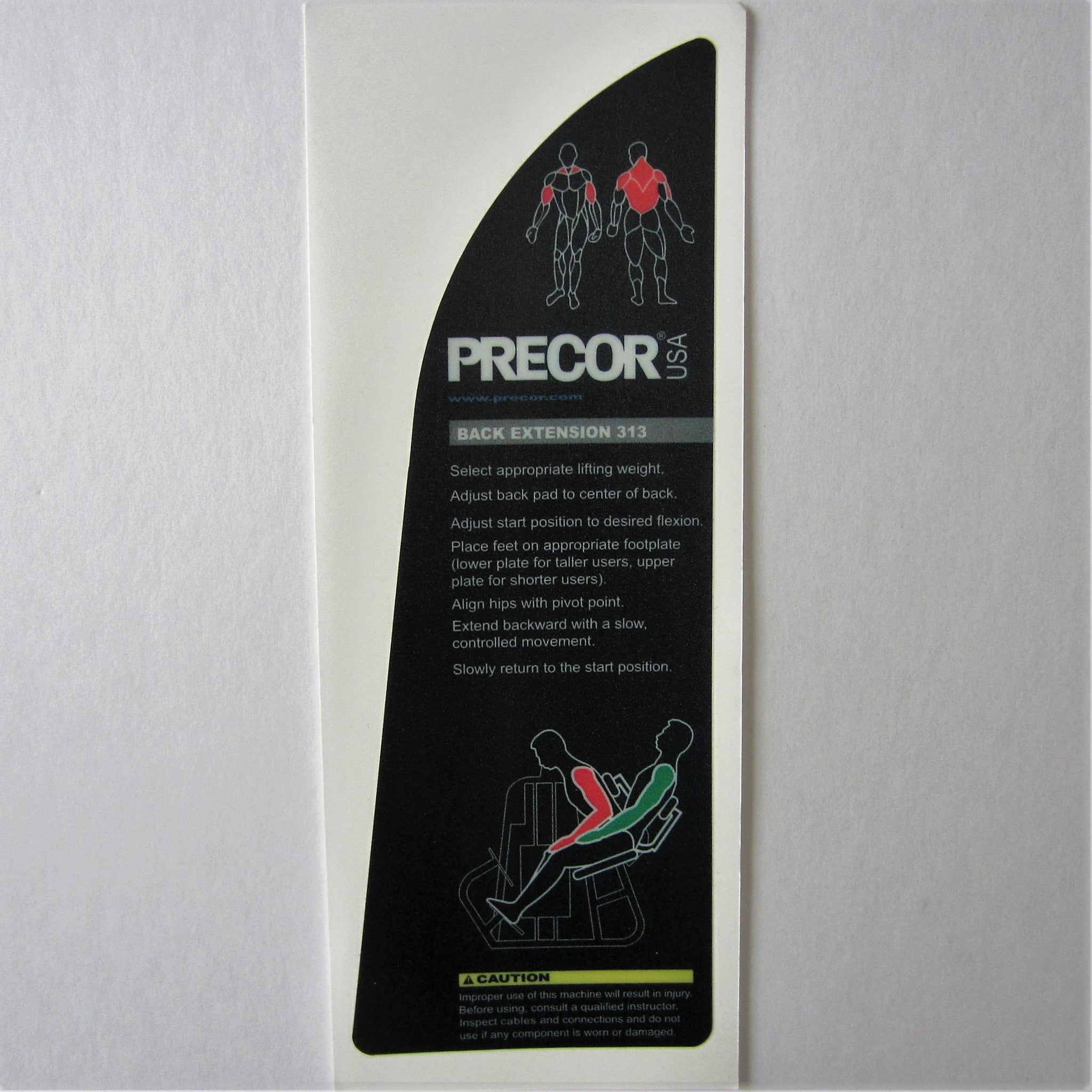 Precor 313 Back Extension