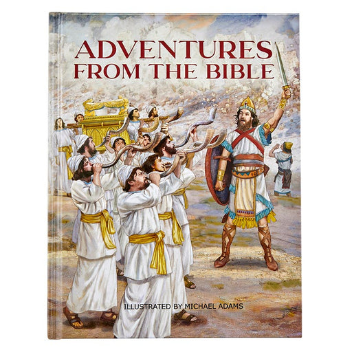 Adventures from the Bible by Bart Tesoriero & Illustrated by Michael Adams