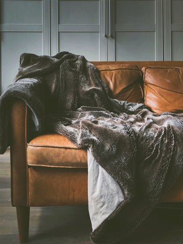 Blanket Couch Cozy