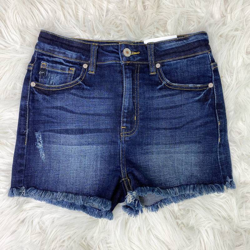 Hazel High Rise Frayed Plus Denim Shorts