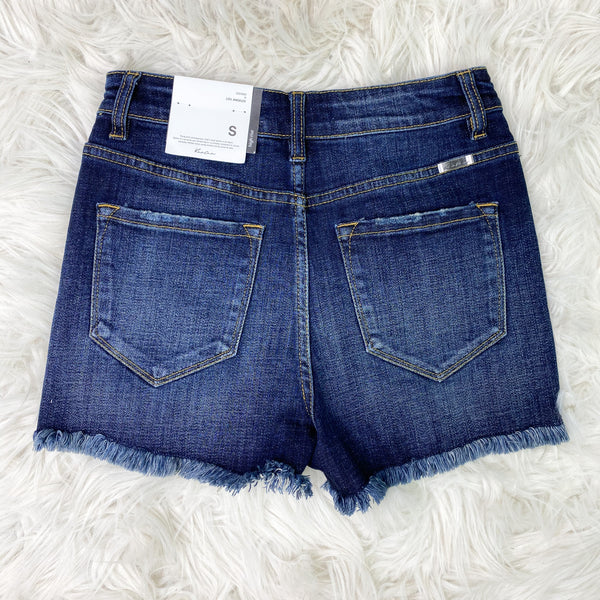 Hazel High Rise Frayed Denim Shorts
