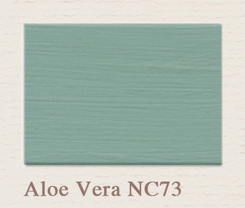 NC73 Aloe Vera - Painting the Past