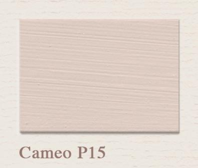 Cameo P15 - Painting the Past - Lieblingshaus