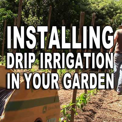 Installing Drip Irrigation in Your Garden