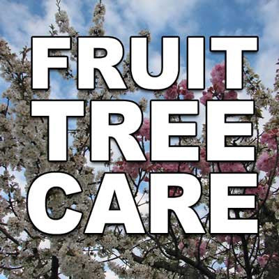 Fruit Tree Care