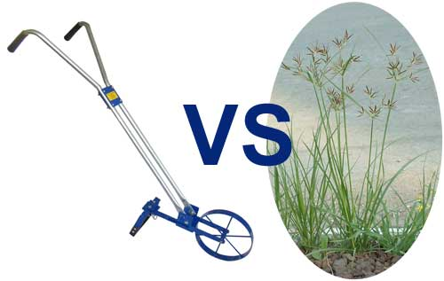 wheel hoe vs nut grass