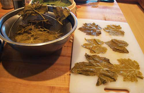 blanched grape leaves