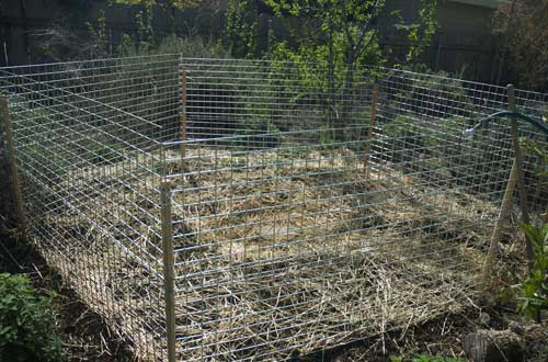 Fenced area for chickens