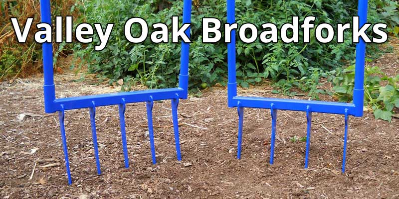 Valley Oak Broadforks collection