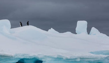 Antarctica's Sea Ice Shrinks to New Record Low