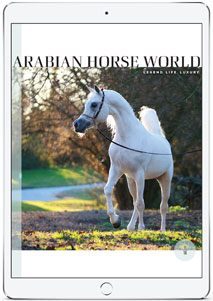 Arabian Horse World digital subscription