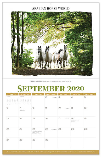 2020 Calendar (Available December 6th)