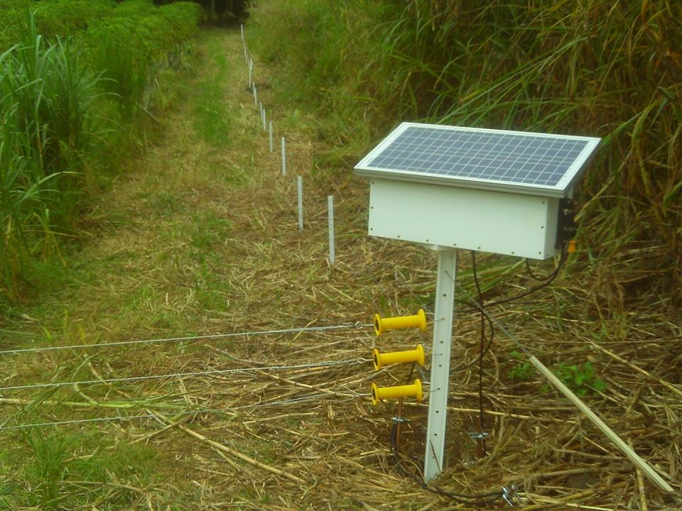 Electric fence insulator trick for rotational grazing paddocks