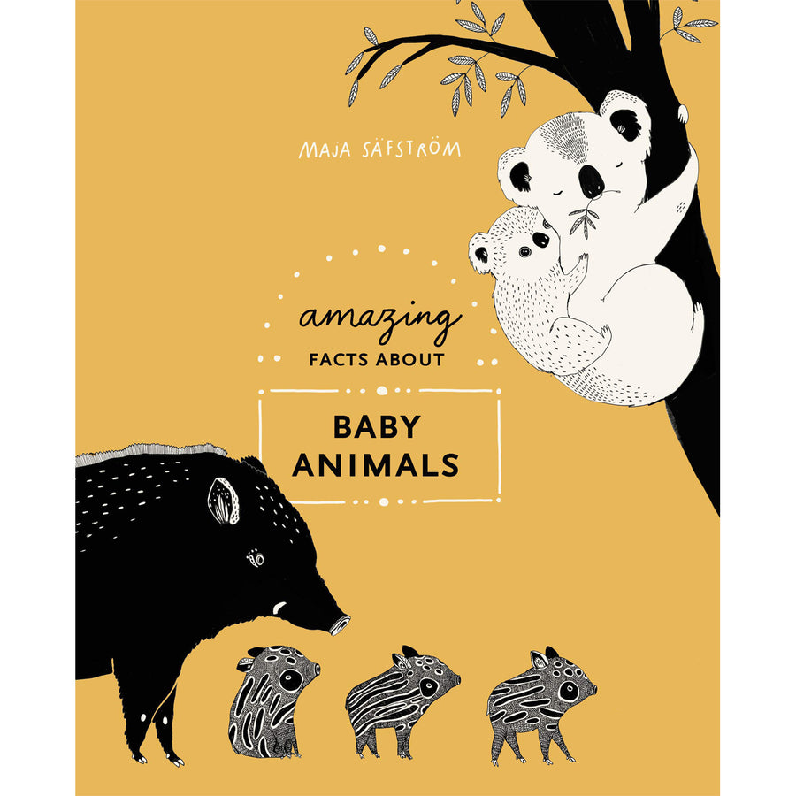 The cover of the book decorated with the title and cute illustrations of baby wild boars and koalas.
