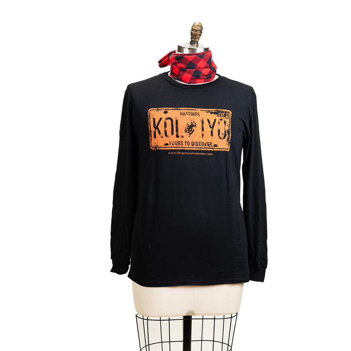 "A grey long sleeve shirt with a graphic of a orange licence plate, the plate says ""Hastings K0L 1Y0 yours to discover""."