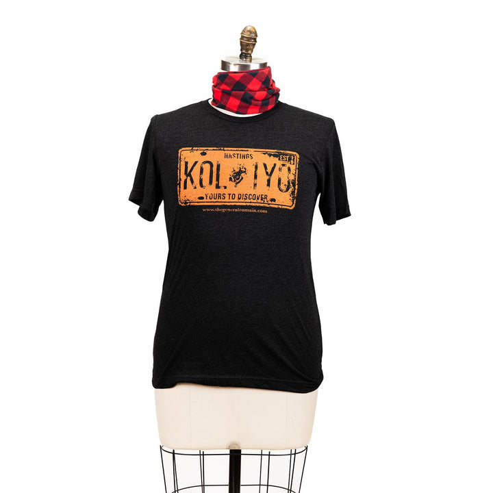 "A grey short sleeve shirt with a graphic of a orange licence plate, the plate says ""Hastings K0L 1Y0 yours to discover""."