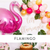 Flamingo Party Supplies and Decorations