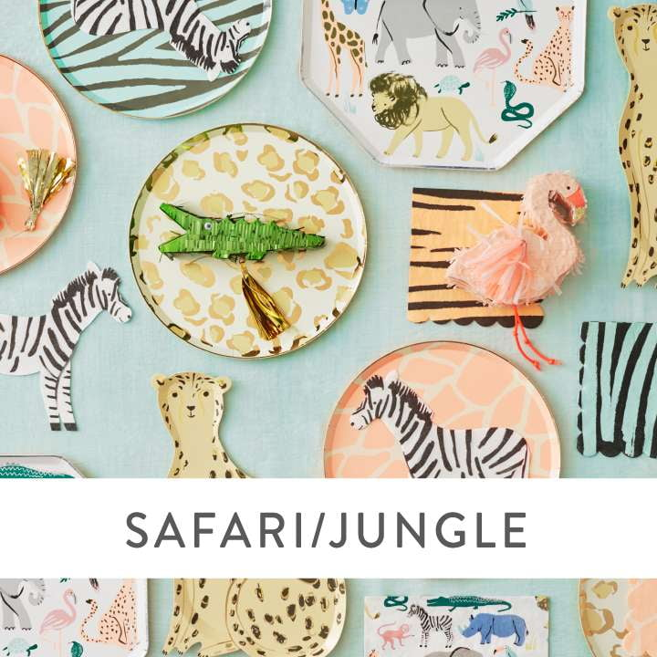 Safari Party Supplies and Decorations
