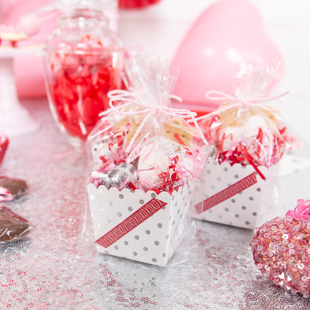 valentine party favor s'mores