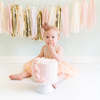 Blush Pink & Gold Tassel Garland Kit