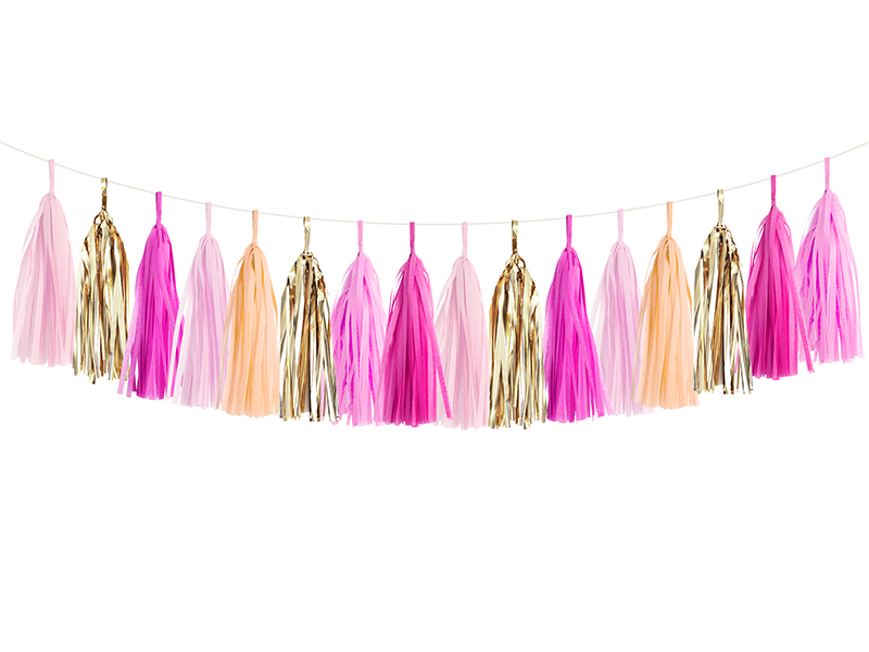 Pink Party Tassel Garland Kit | The Party Darling