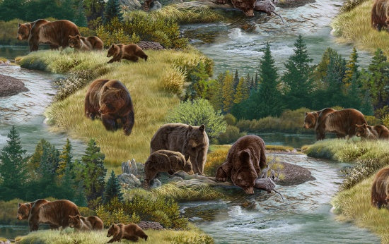 NORTH AMERICAN WILDLIFE NEW GRIZZLIES