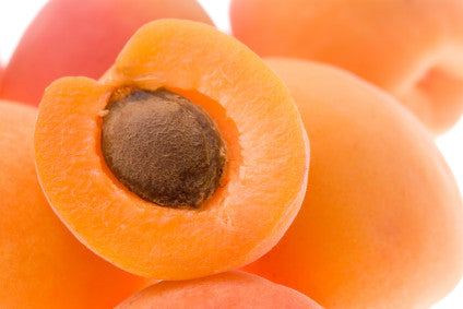 The Wonders of Apricot Kernel Oil
