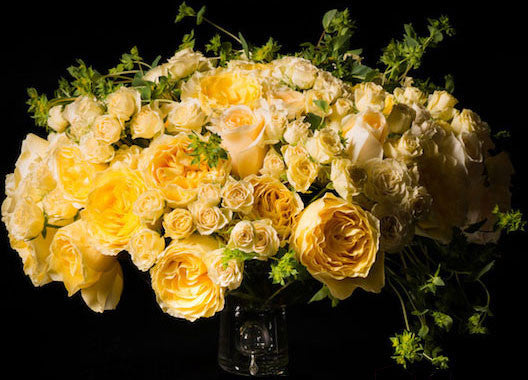 Gorgeous Yellow Garden Roses