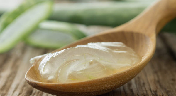 Can You Use Aloe Vera for Vaginal Dryness? We Talk All Things Aloe — And More