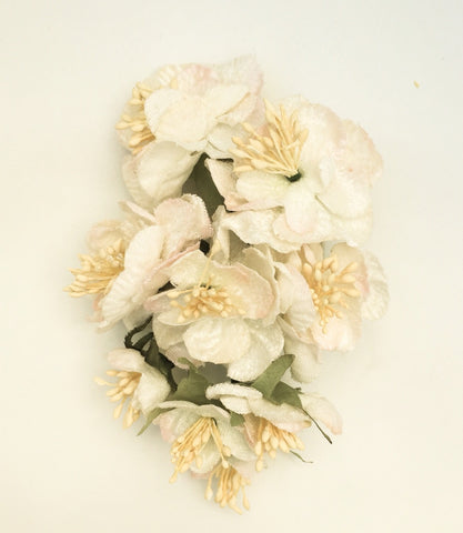 CARABELLA ROSE POSY CREAM