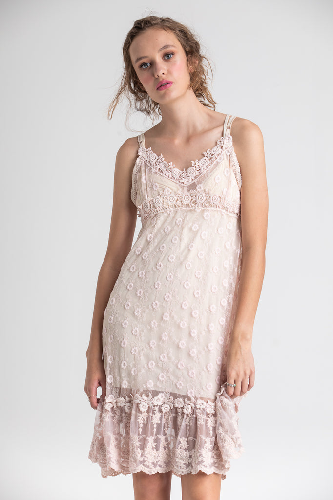 lace slip Evangeline lace dress.