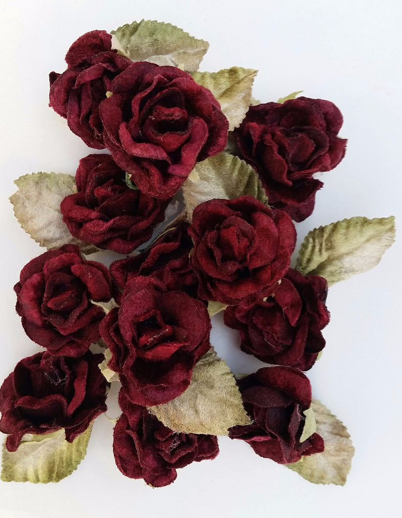 Baby Rose pack of 12 . Burgundy