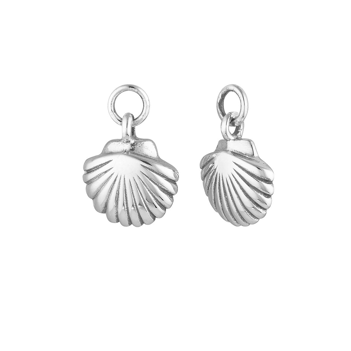 Seashell Ear Charms