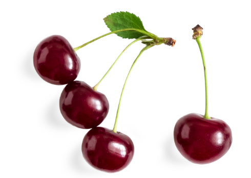 Tart Montmorency Cherries