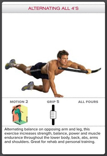 Bodyblade Rehab Exercise - Alternating All 4's