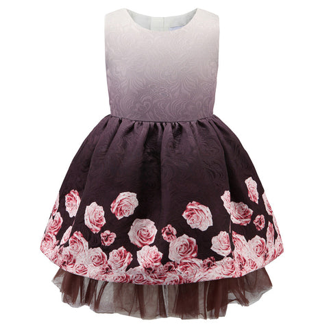 3-13 Years Girls Princess dress Toddler Girls party Lace dress
