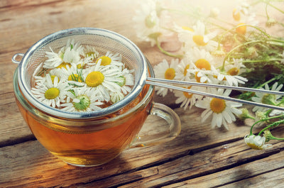 Chamomile - Herbal Wisdom Wednesday