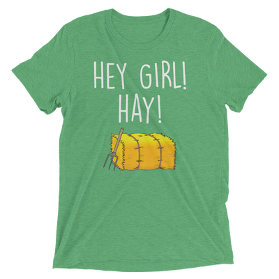 Hey Girl! Hay! (Premium Triblend)