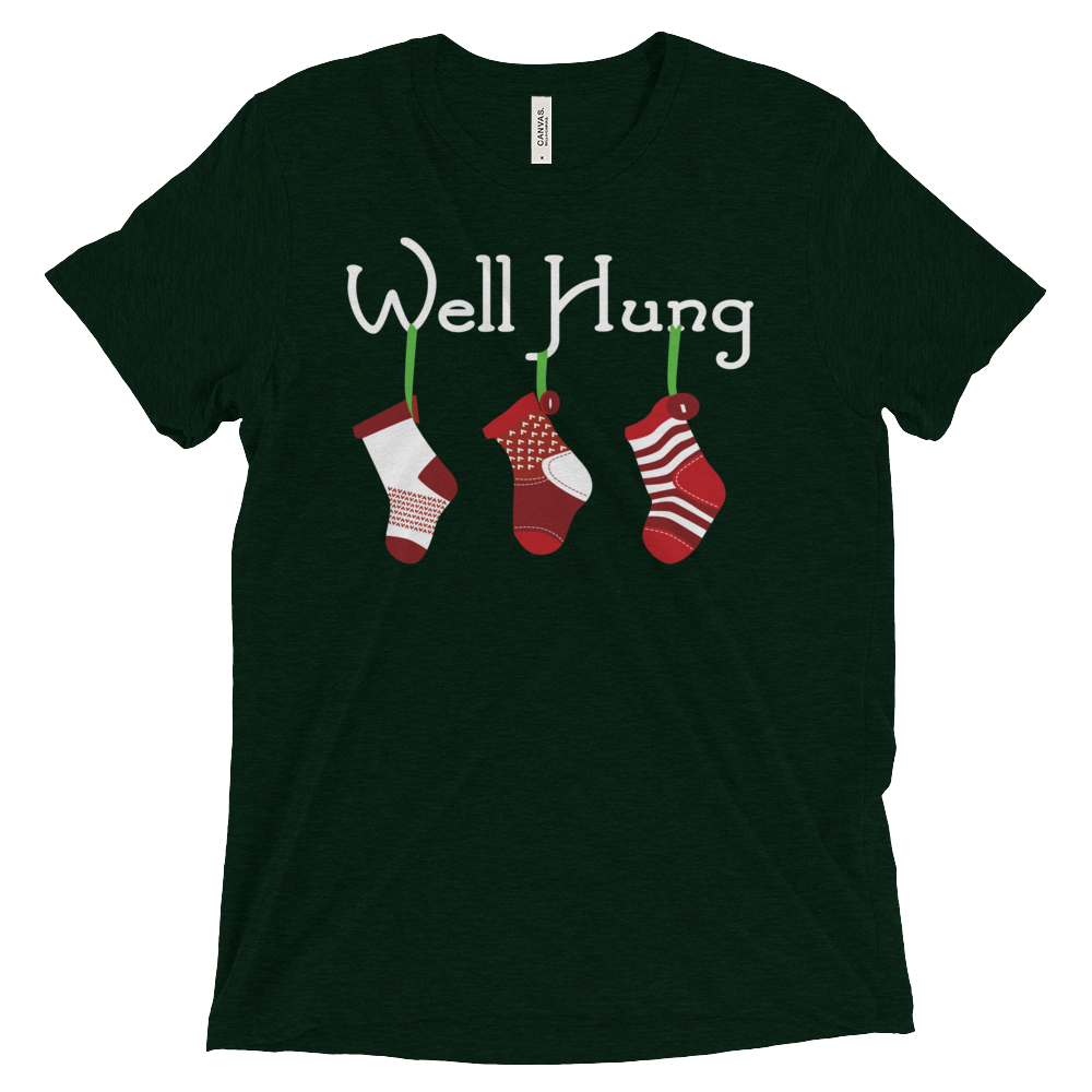 Well Hung Stocking (Premium Triblend)